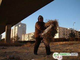 流浪街头乞丐们一年的生活图片